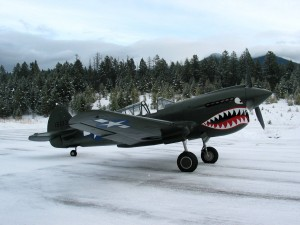 "1941 CURTISS P-40E/N ""KITTYHAWK"""